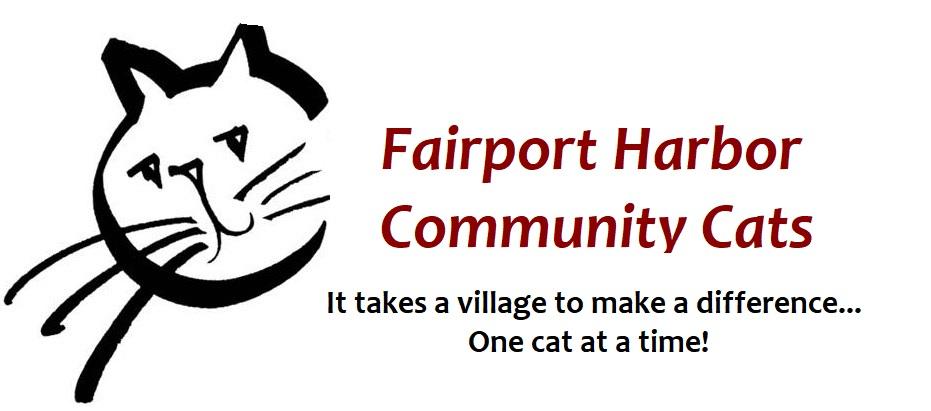 Fairport ear tipped logo cat 2018